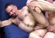 Hairy Gay Bear
